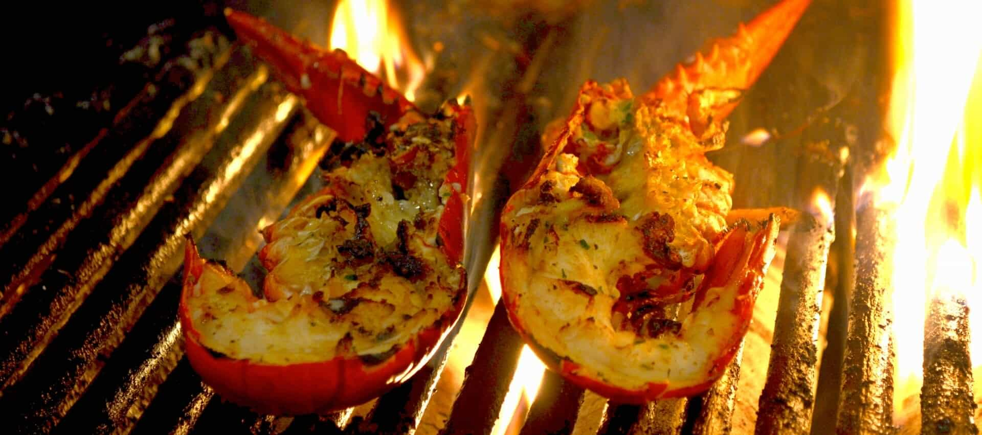 Our Lobsters Drago S Seafood Restaurant